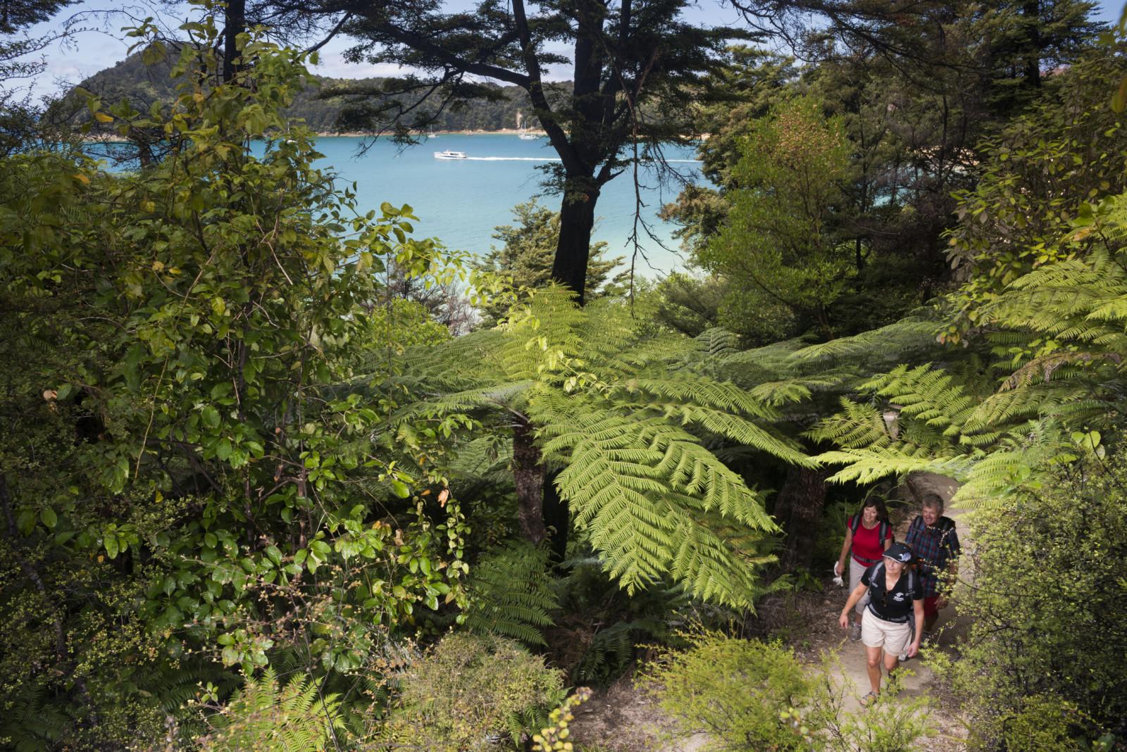 Activities Abel Tasman National Park